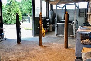 Tinderbox-Sport-Horse-Yard-Facilities-Washbay-Solarium